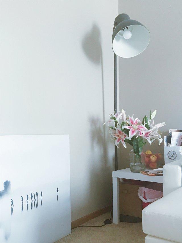 🌳绿植治愈系的客厅