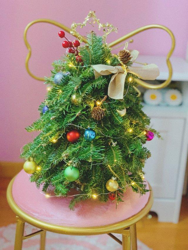 🎄圣诞树|生活中的仪式感 𐂂