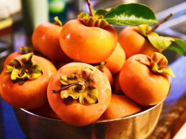 【秋末立冬之时,我家的柿子又熟啦!】