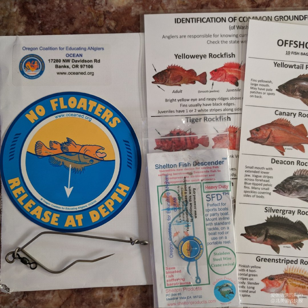 免费Fish Descender,...