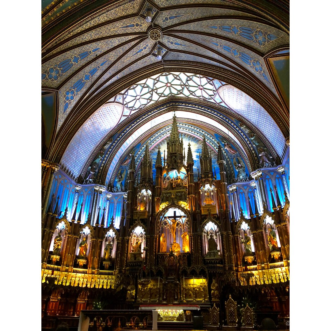 蒙特利尔圣母大教堂⛪️ 逛完再来顿...