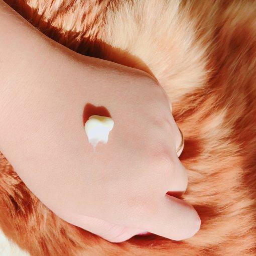 茱莉蔻玫瑰护手霜|要做精致girl手部护理可是很重要的呀🌹