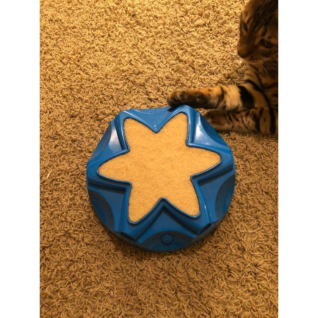 Ourpet's 电动猫玩具