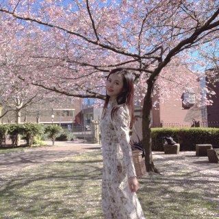 🌸在英国也可以拍超好看的春日樱花写真!...
