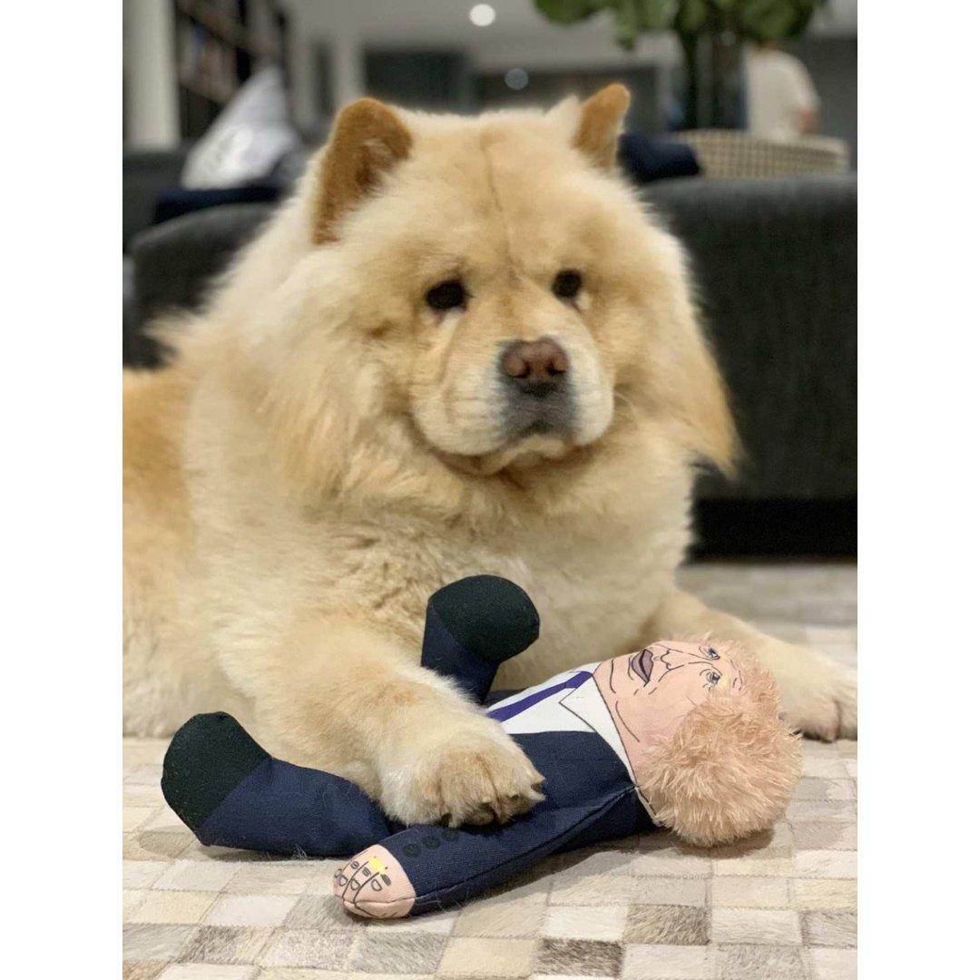 Boris Johnson,bonbon_chowchow