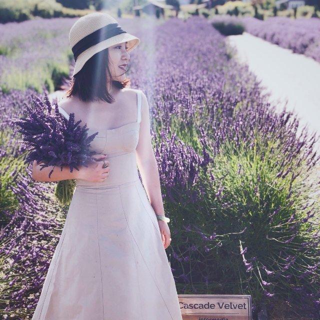 一段紫色邂逅,周末去的薰衣草庄园