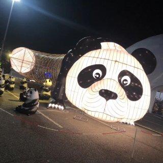 纽约入冬后适合去的地方   Hello Panda彩灯展