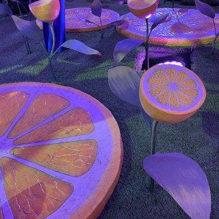 纽约新地标 🍋柠檬公园🍋...