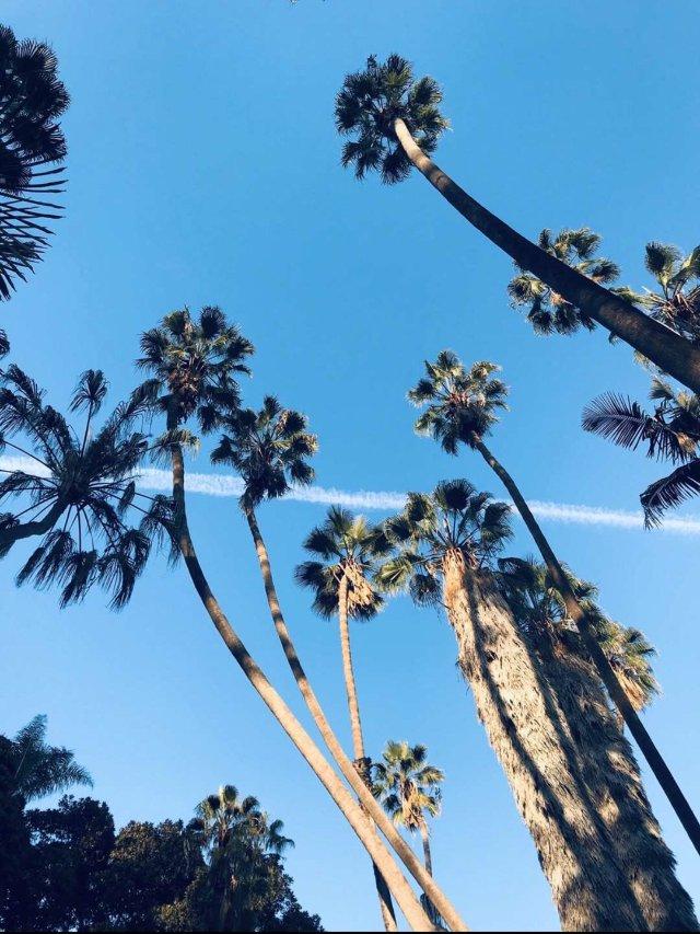 San Diego balboa ...