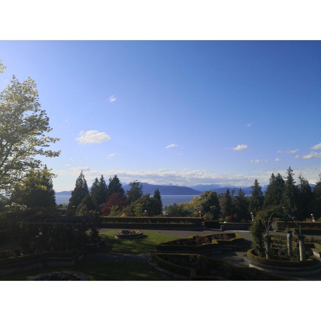 风景超美的ubc玫瑰园