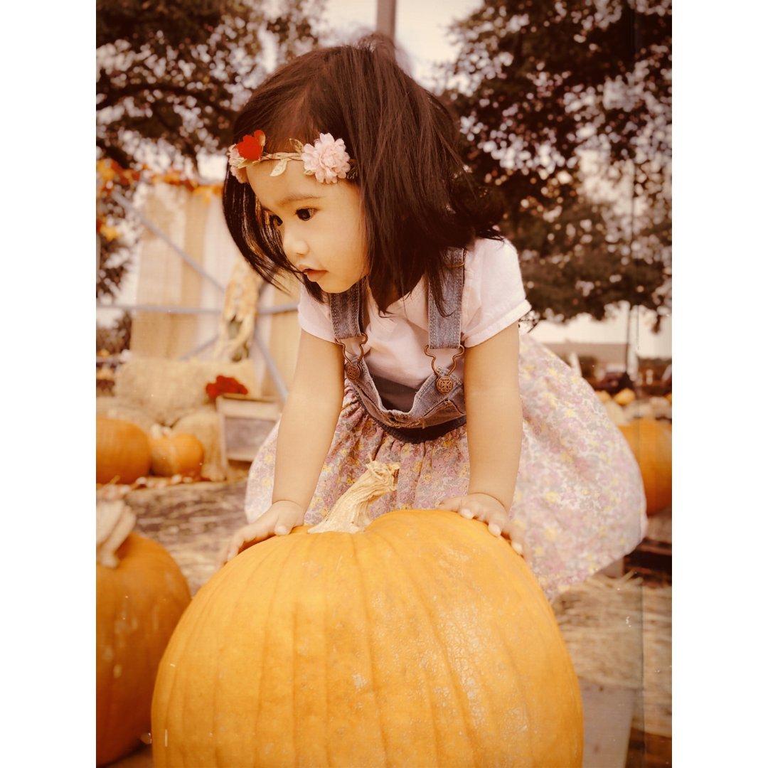 一年一度的Pumpkin Patch~
