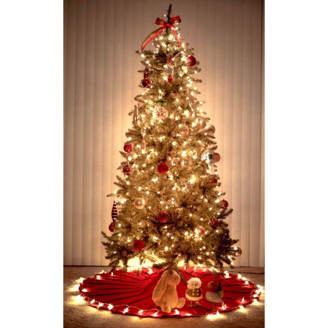 抓住圣诞节🎄🎄🎄的尾巴!最喜欢的节...