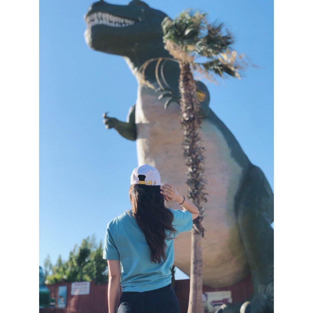 不要错过城市中的大恐龙|Cabaz...