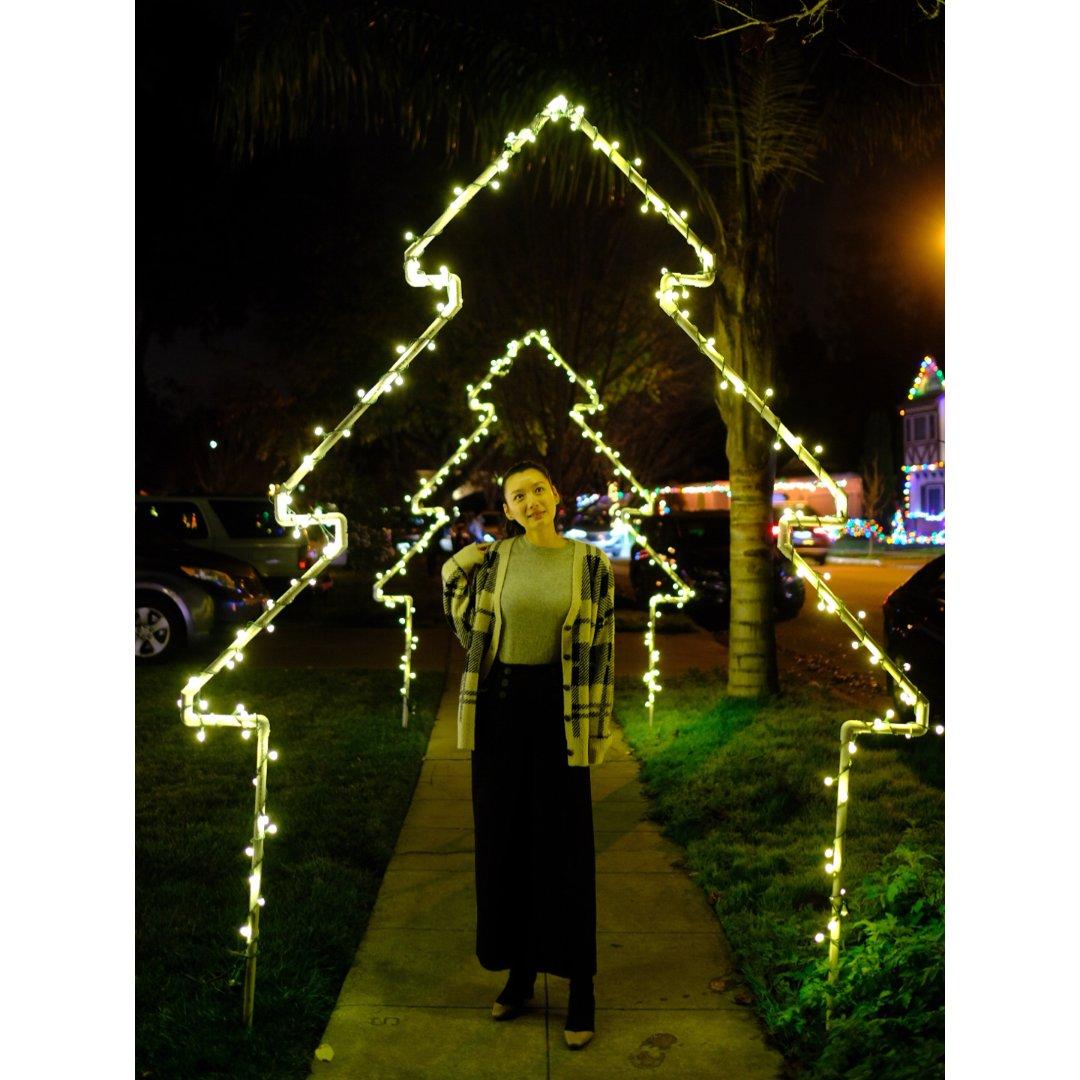 南湾Willow Glen找圣诞味🎄