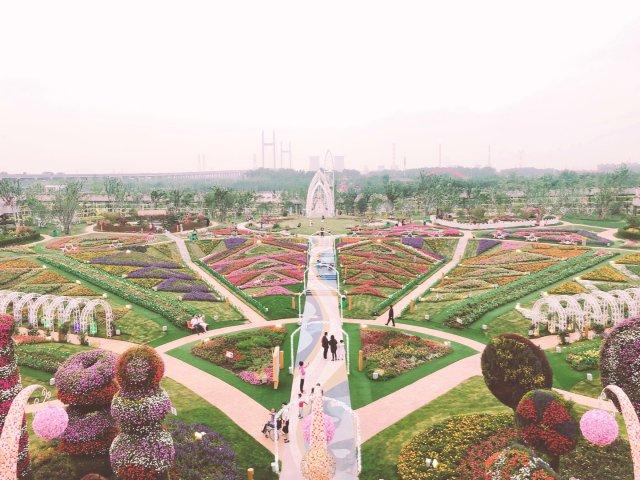 上海好去处 - 五彩缤纷的花花世界...