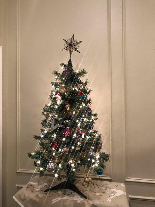 🎄装饰圣诞树🎄全家老小齐上阵
