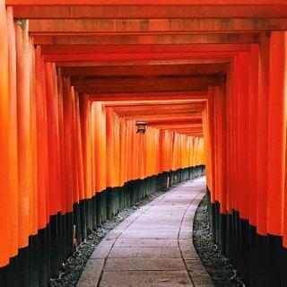 我有时差睡不着,躺床上发超长京都一日行程...