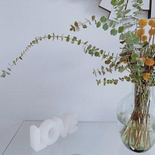 最近迷上了有色玻璃花瓶...