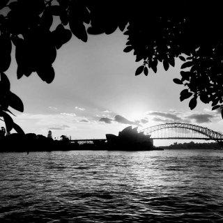 大年三十的海港桥...