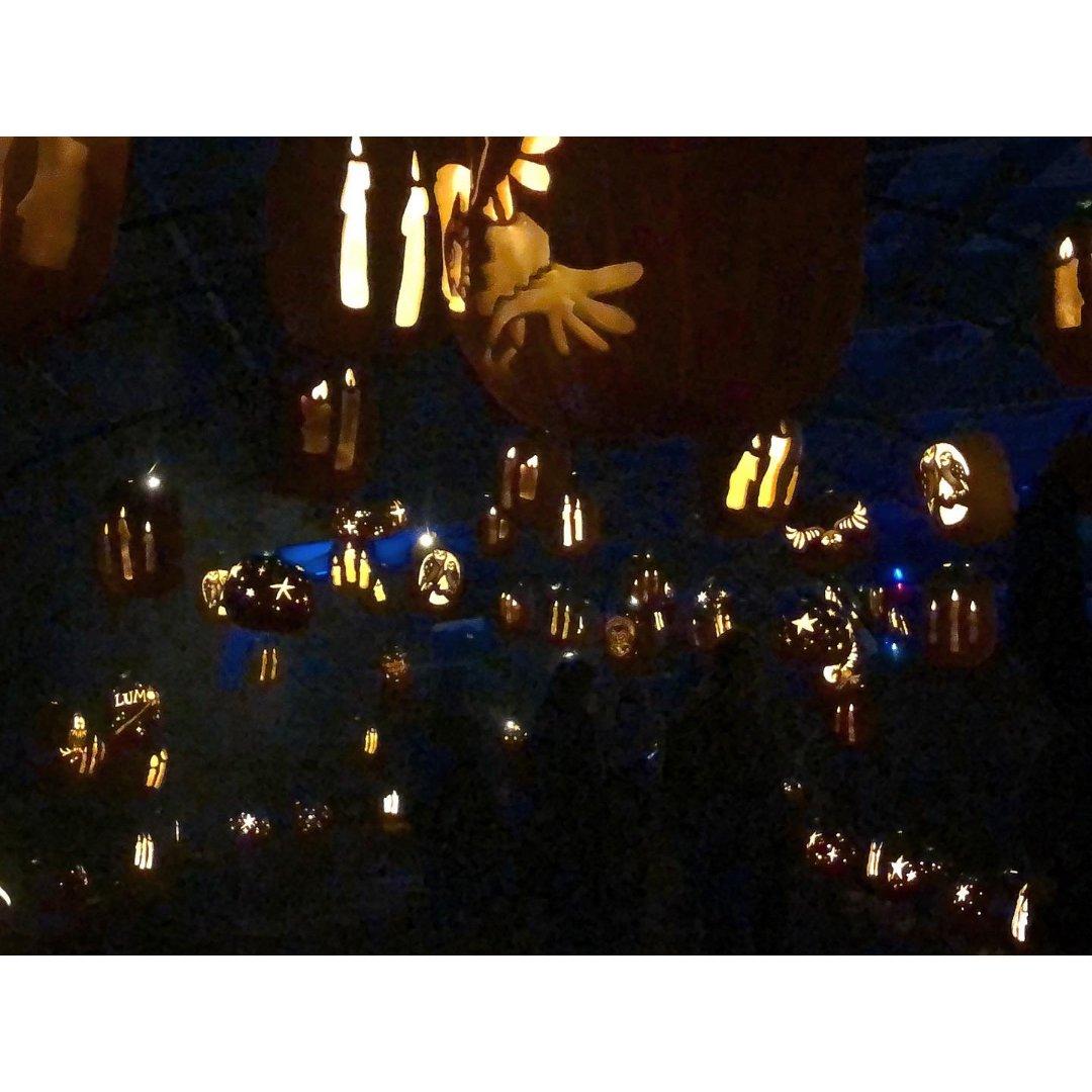Santa Rosa|南瓜夜🎃