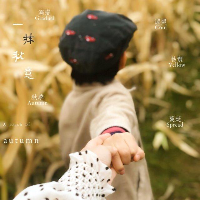 🍂秋日周末好去处/Corn Maze🍂