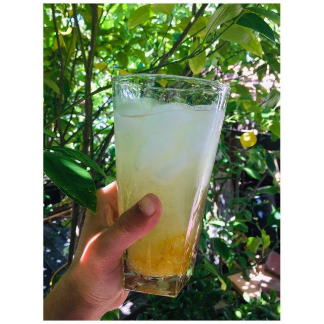 Moment#14|敬夏天,蜂蜜柚子茶