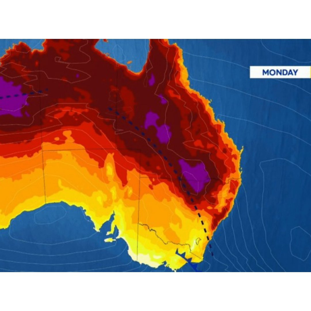 高温来袭!悉尼今日最高气温预计达40℃,...