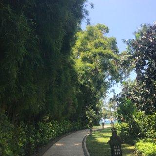 我与洲际的故事之巴厘岛洲际...