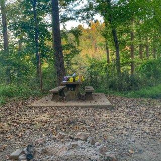 秋天最适合露营啦🤩达拉斯周边露营好去处推...