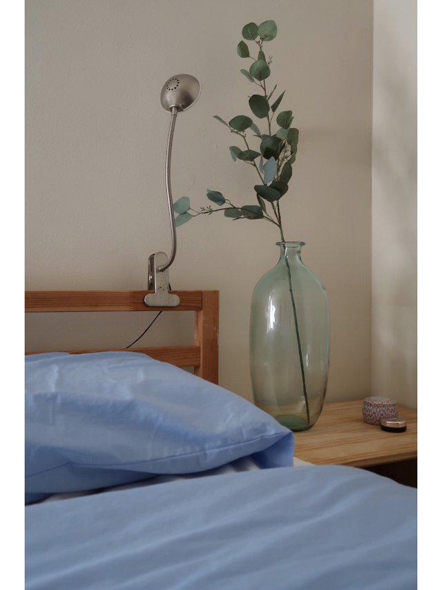 租房也是家!换季进行时🌳卧室绿植终...