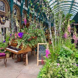 伦敦花展 convert garden...