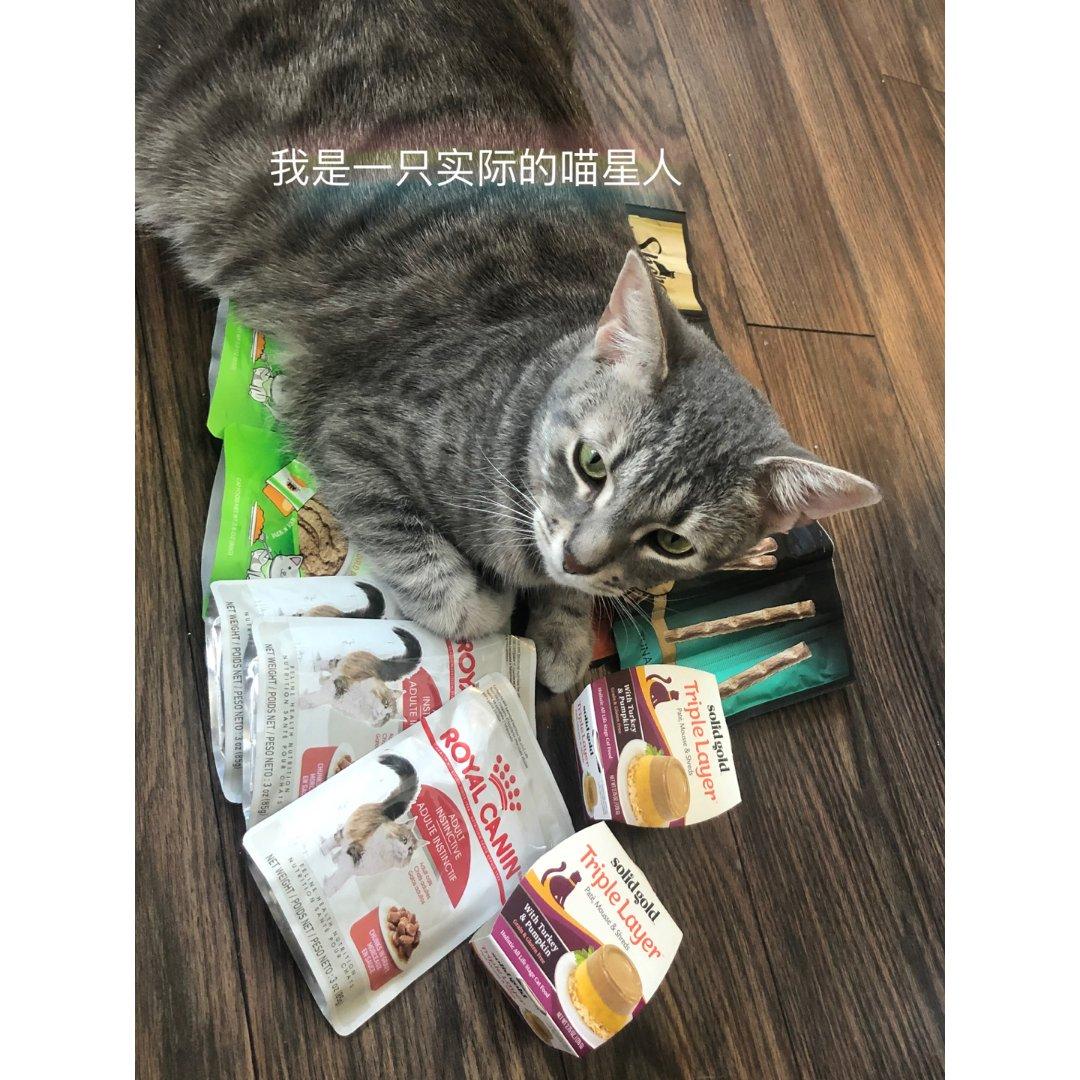 猫咪实力认证 来自chewy的box