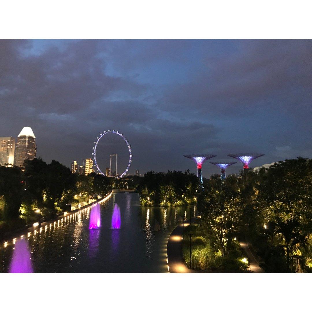 下半年去新加坡走走吧