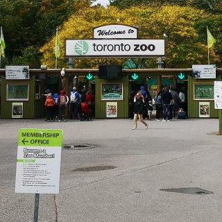 @你身边有动物园会员的朋友,带你免费撸动...