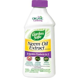 Garden Safe 16 oz. Neem Oil Extract Concentrate-Hg-83179-1 - The Home Depot