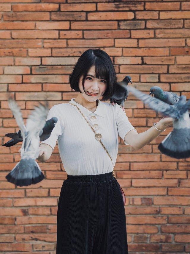 泰国🇹🇭清迈 网红打卡地 塔佩门🕊