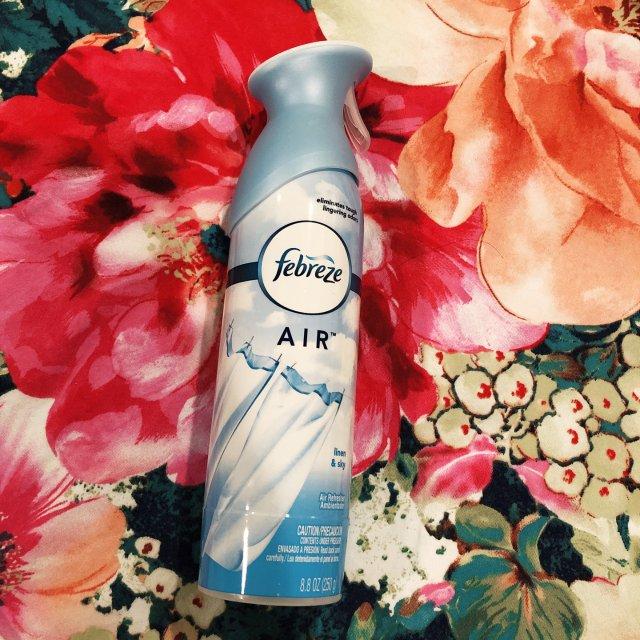最爱的空气清新剂