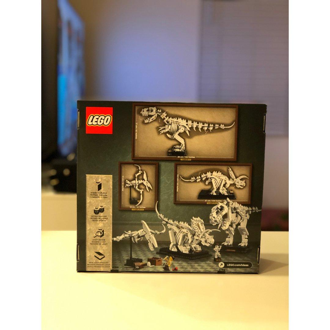 欢乐的Lego考古队,恐龙骨架你还...
