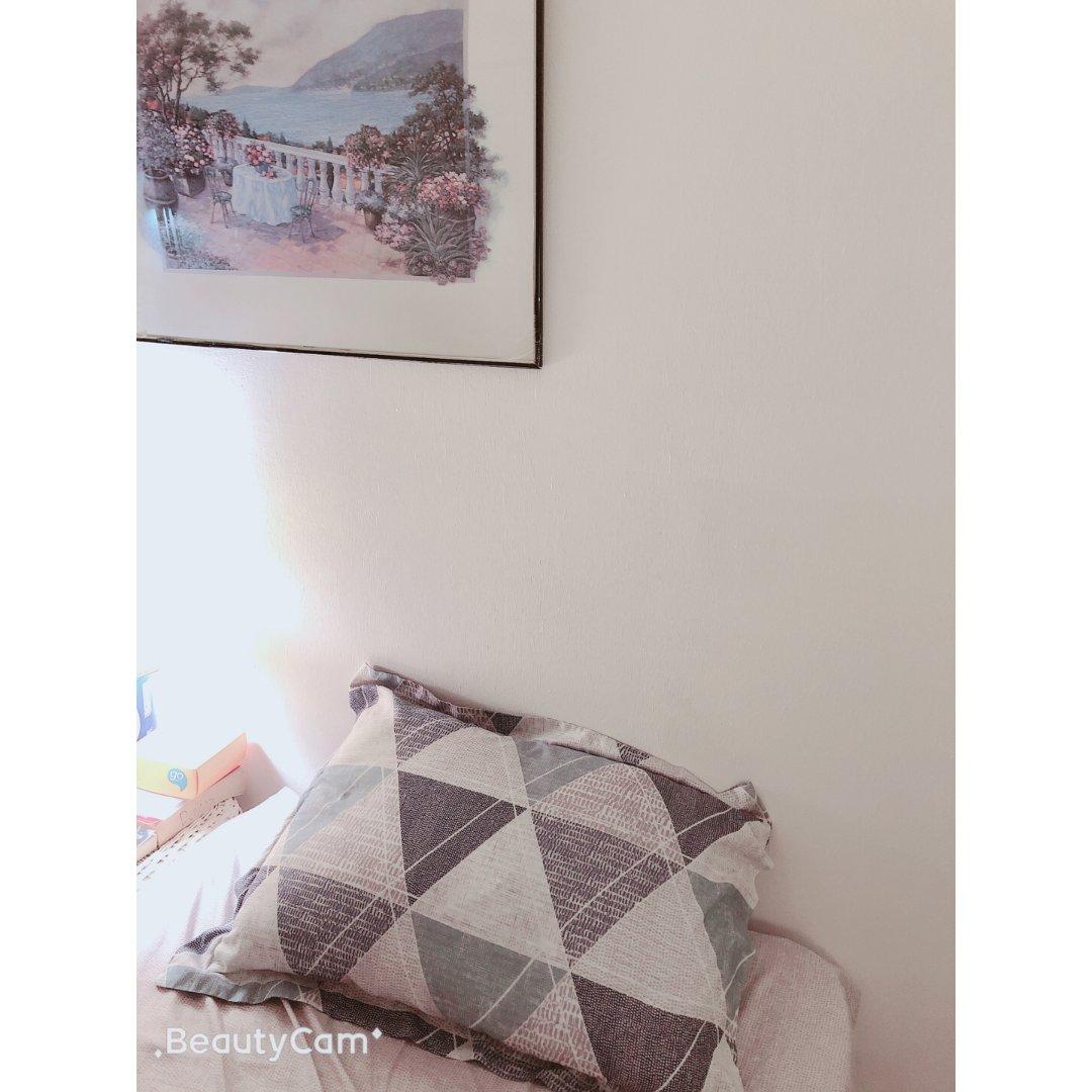 黑五买的Manstays 的枕头