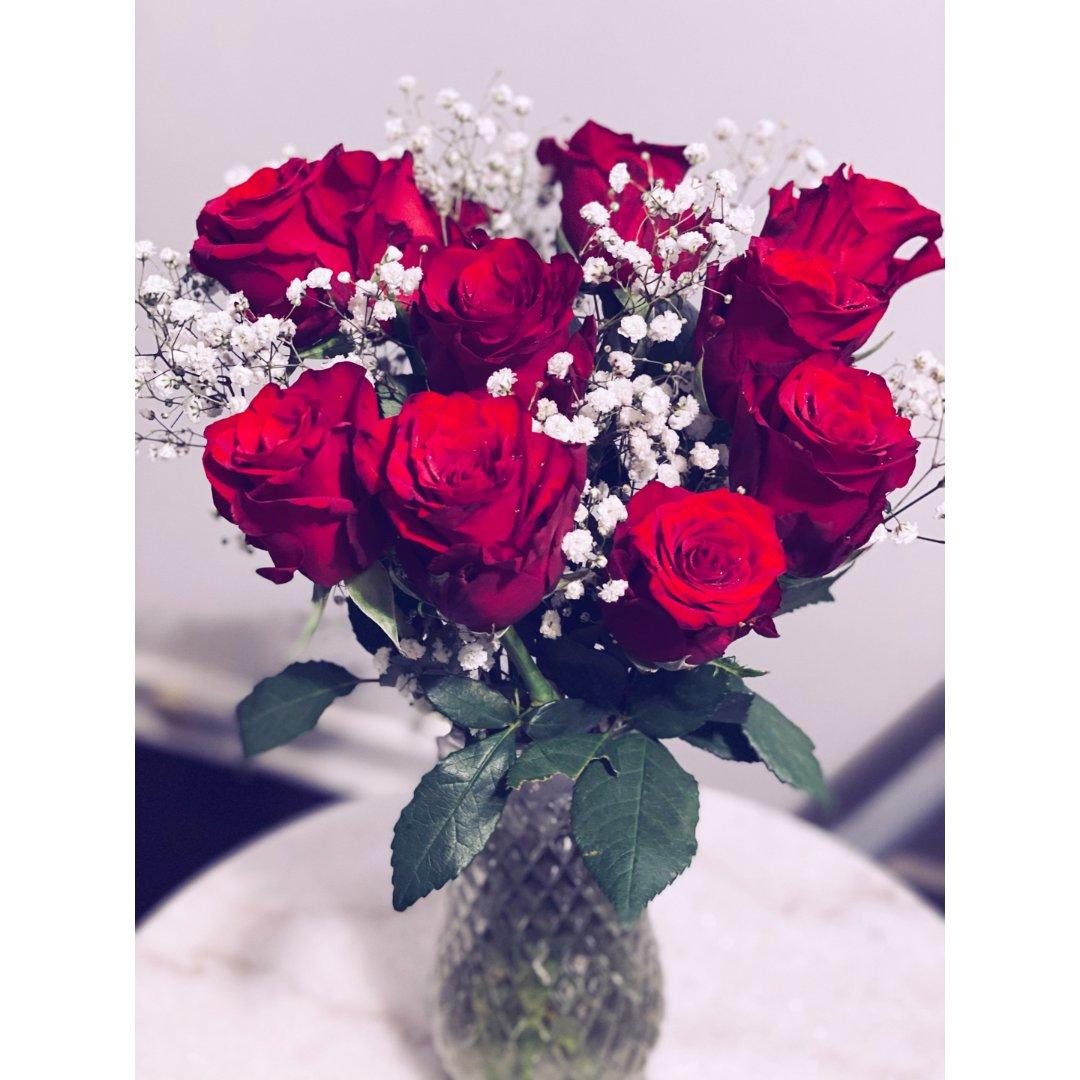 温暖牌红玫瑰