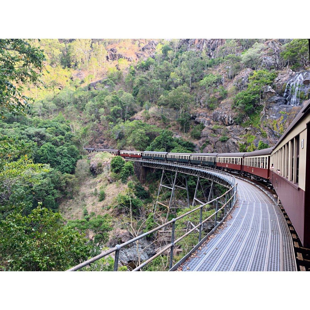 澳洲旅行 | 库兰达必玩热带雨林高...