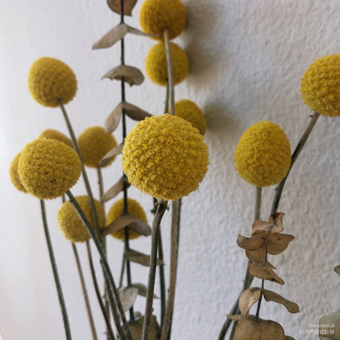 宅家的日子 乾燥花也能提升生活幸福感