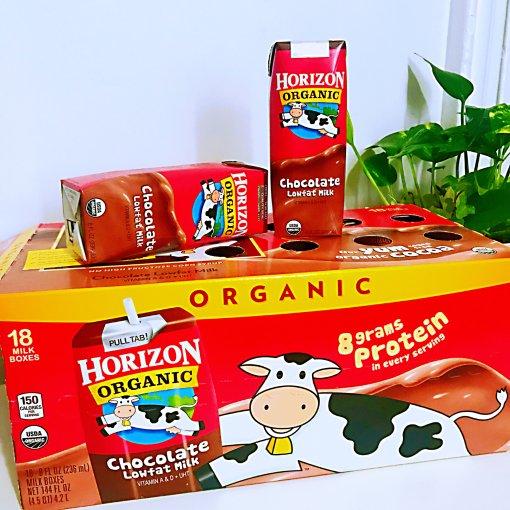 小孩子最爱❣️Horizon 低脂巧克力牛奶