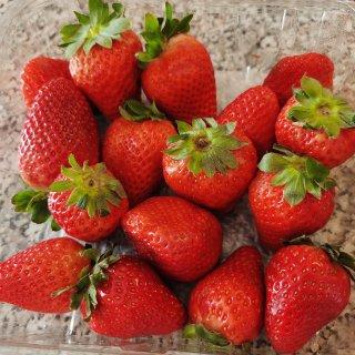 在家也要多吃水果...