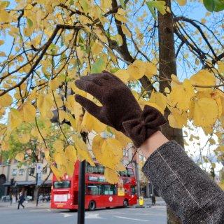 伦敦的秋天太美...