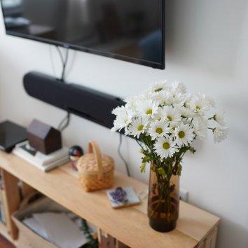 家里阳光好的时候暖洋洋的🌞 最近宅在家里,感觉比平时更...