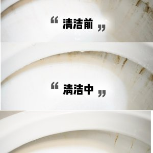 ToiletWand 马桶清洁刷补充装20个