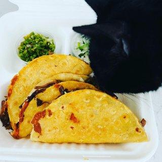 曼城Koffee Pot的taco 长队...
