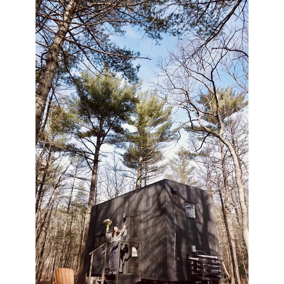 逃离纽约 最棒的小木屋体验!