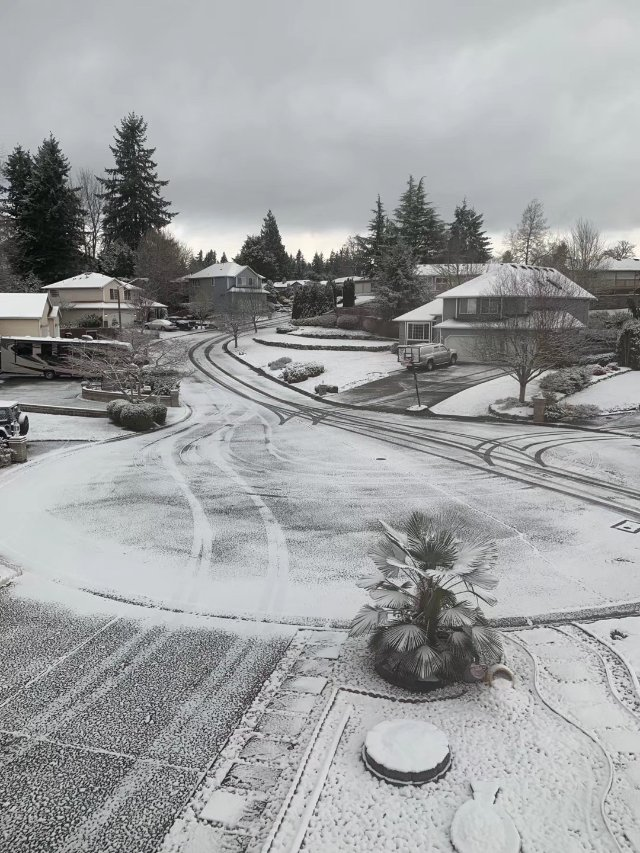 2020年的第一场雪❄️黑白照